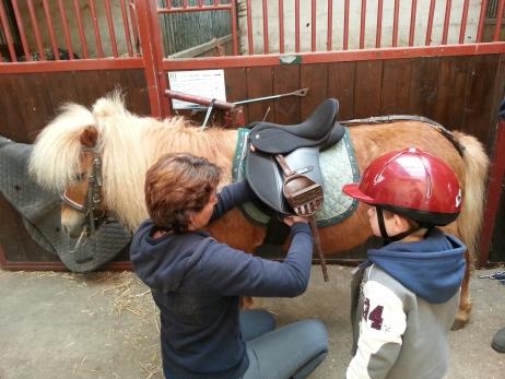 chevalerie-poney
