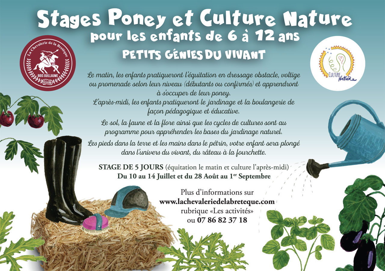 Stages poney culture nature